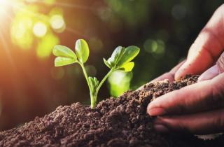 Duurzame landbouw